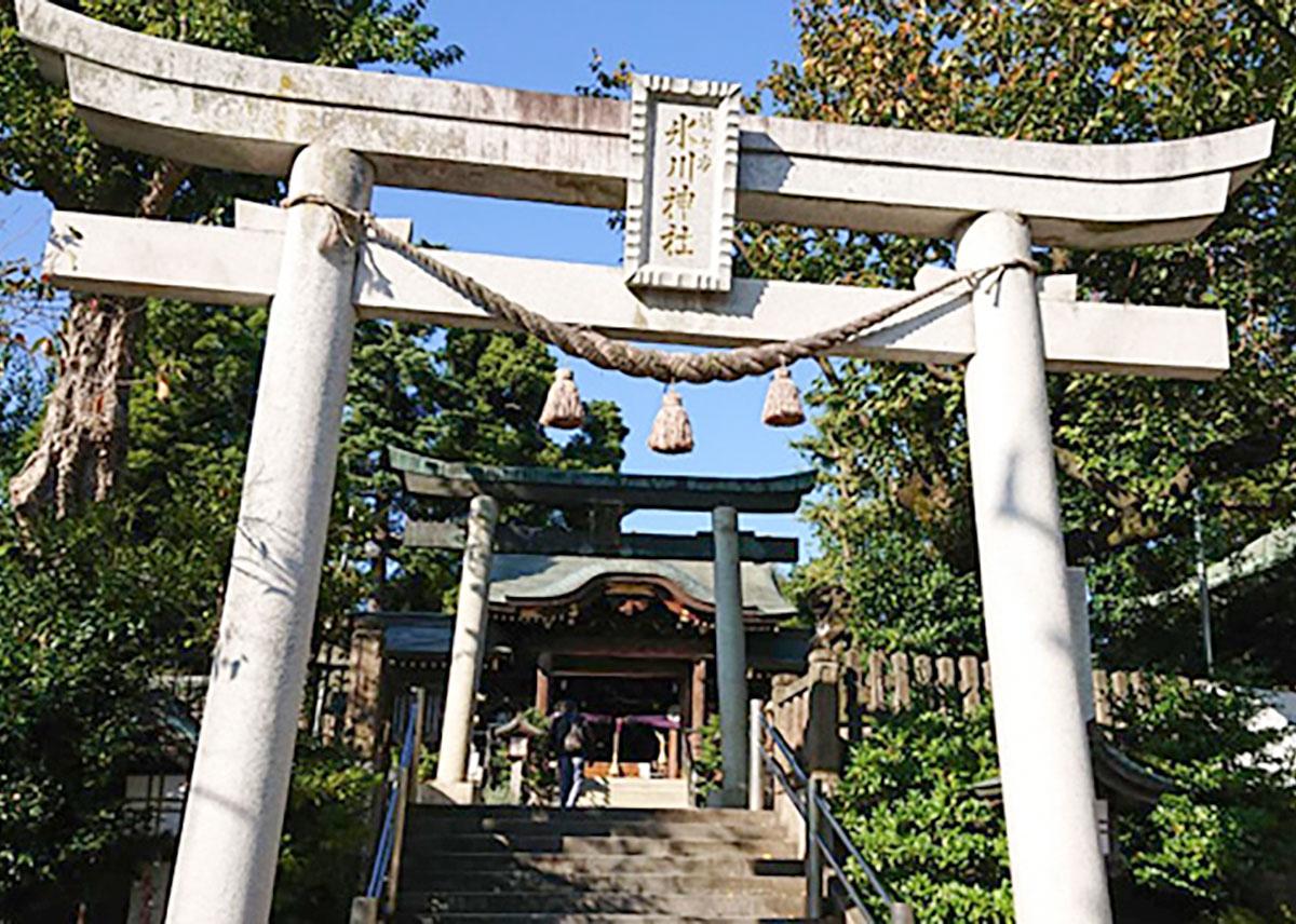 鳩ケ谷総鎮守氷川神社
